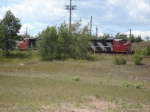 CN Power Hideing In The Yard